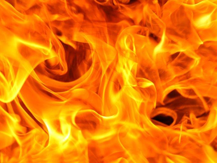 Chronique : The Fire King de AmberJaeger